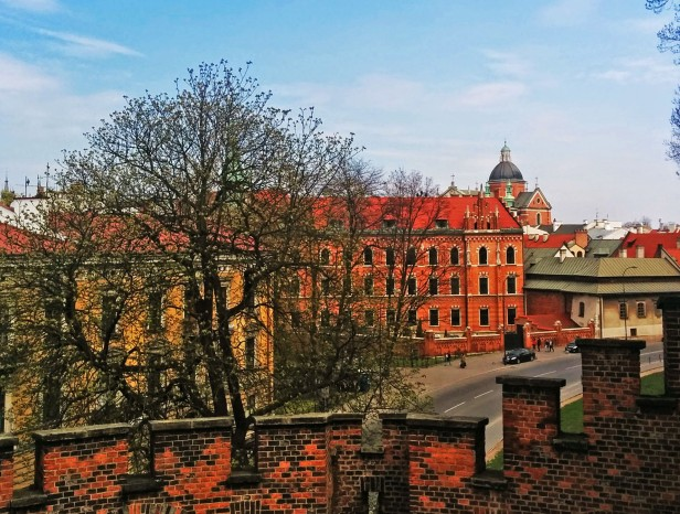 View from the walls of Wawel Castle